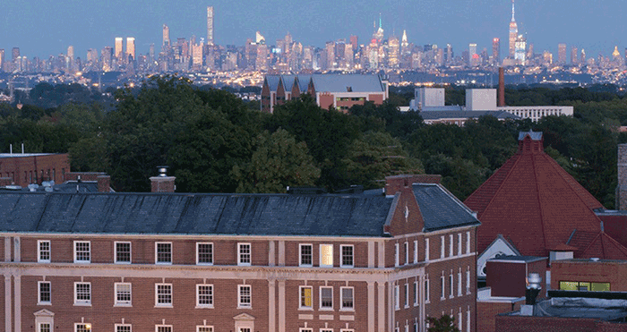 The New York skyline as seen from the Township of Montclair.